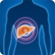 Вирусные гепатиты (или болезнь Боткина)