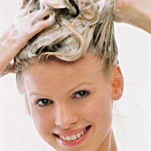 Лошадиный шапмунь для волос: вред или польза