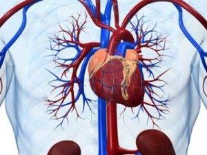 coronarydisease