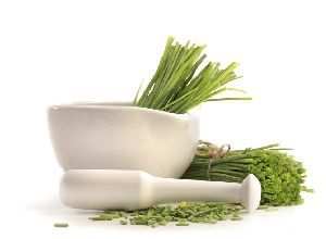 Fresh cut chives with a mortar and pestle