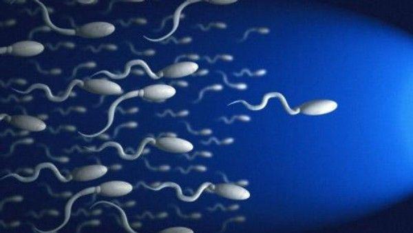 Сперма на анализ фото #2